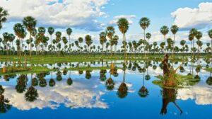 Lago La Oca Ciudad de Formosa Litoral argentino turismo en argentina