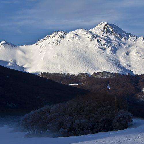 Cerro Castor Tierra del Fuego Patagonia Turismo en Argentina